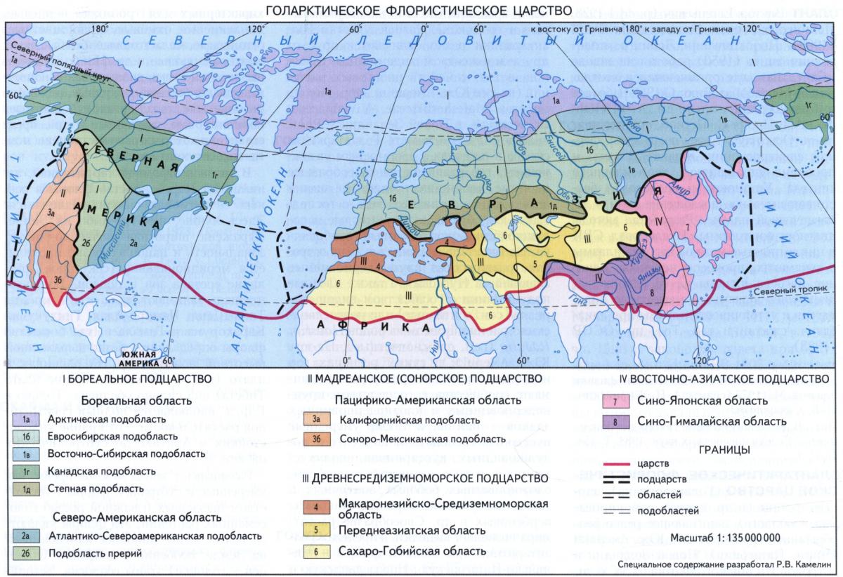 Голарктическое флористическое царство