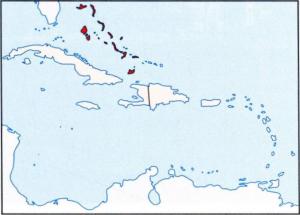 Багамские острова правовая система