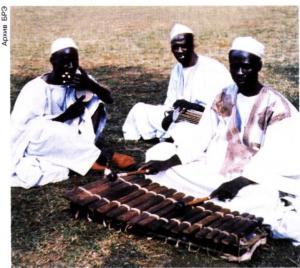 Музыканты бамбара.