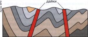 Дайка